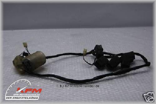 Honda CBR1100XX CBR 1100XX 1100 XX 96-98 Kabelbaum Lampe
