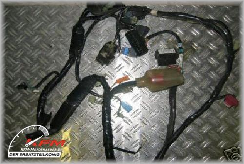 CBR600 CBR 600 Honda Bj 99 - 00 Kabelbaum