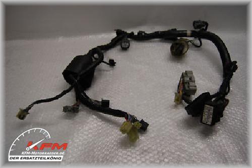Honda CBR600 CBR600FS CBR 600 FS Bj 01 - 05 Kabelbaum