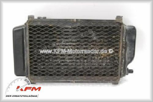 Kawasaki EL250 EL 250 88-96 Kühler Wasserkühler